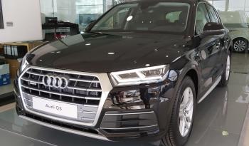 Audi_Q5_16823_1